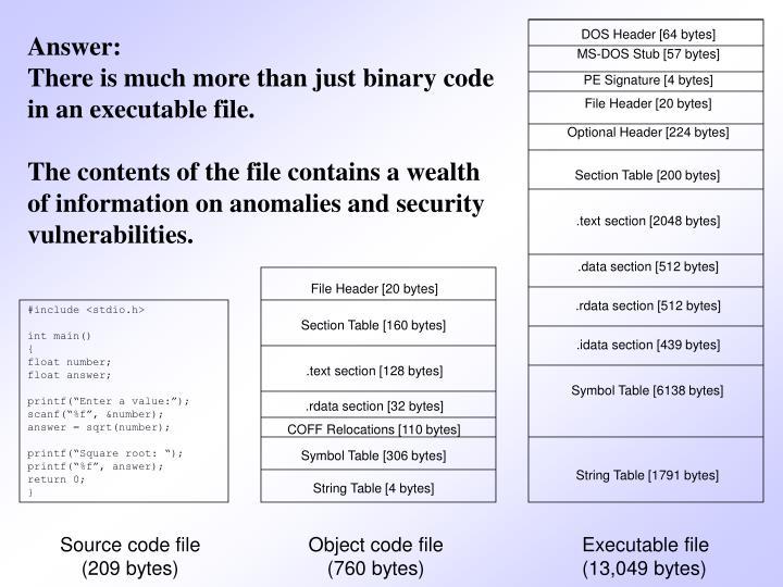 DOS Header [64 bytes]