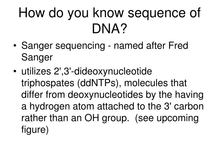 How do you know sequence of DNA?