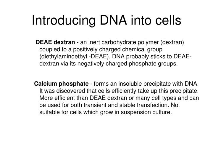 Introducing DNA into cells