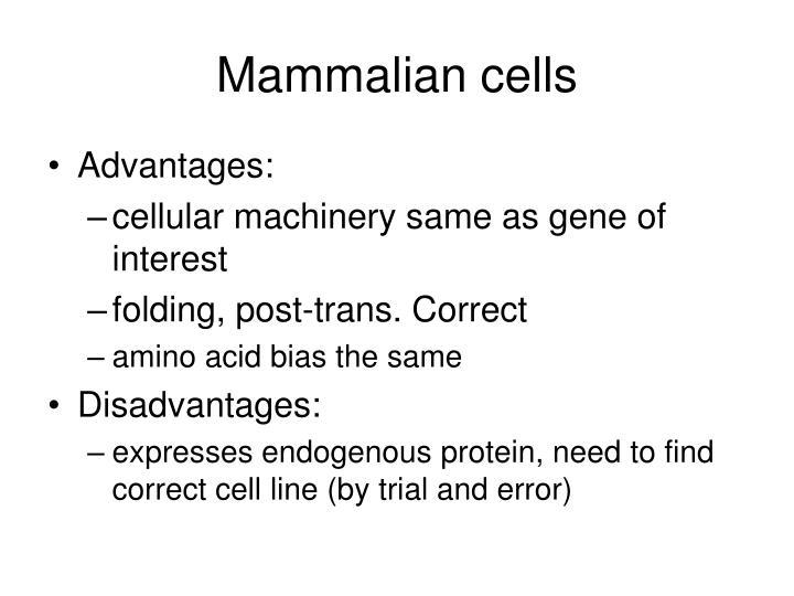 Mammalian cells