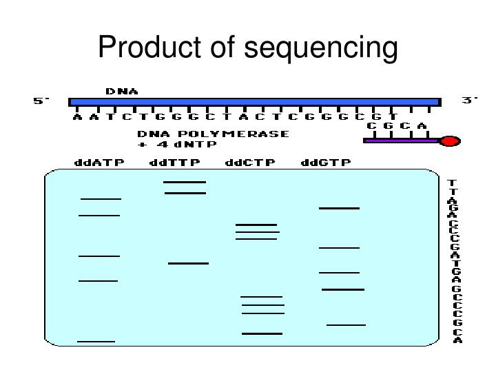 Product of sequencing