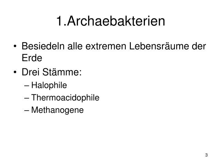 1.Archaebakterien