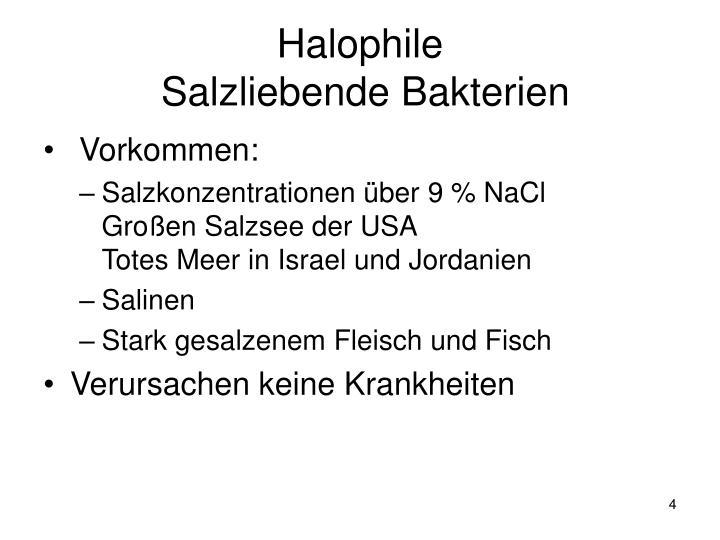 Halophile