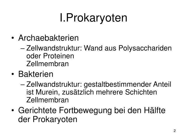 I.Prokaryoten
