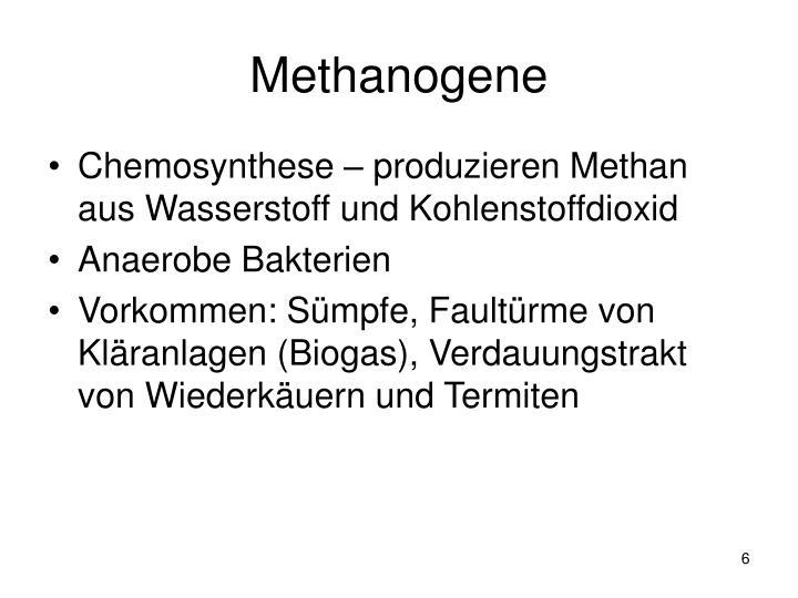 Methanogene