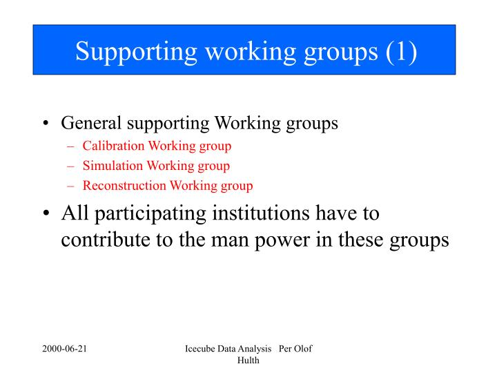 Supporting working groups (1)