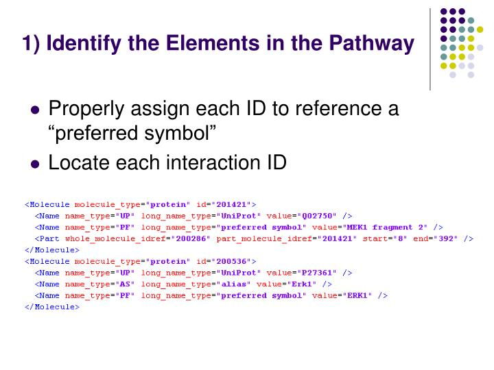 1) Identify the Elements in the Pathway