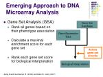 emerging approach to dna microarray analysis