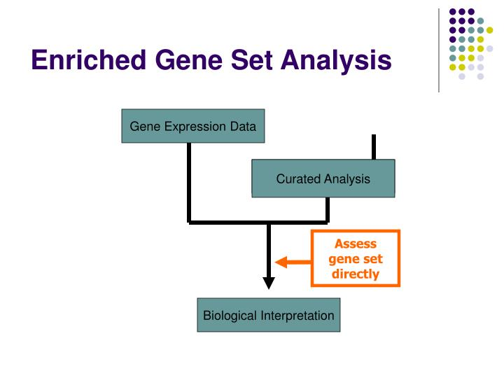 Assess gene set directly