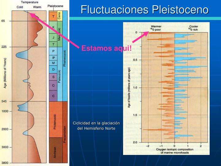 Fluctuaciones Pleistoceno