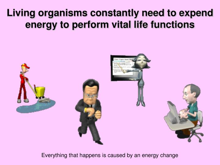 Living organisms constantly need to expend energy to perform vital life functions