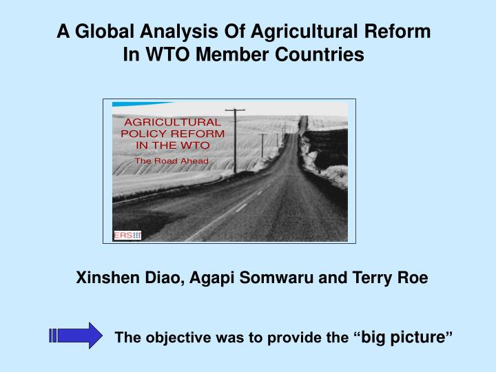 A Global Analysis Of Agricultural Reform In WTO Member Countries