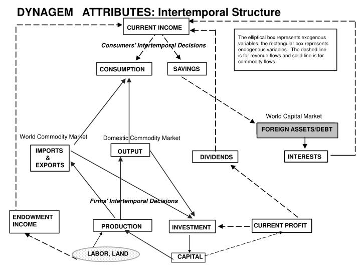 DYNAGEM   ATTRIBUTES: Intertemporal Structure