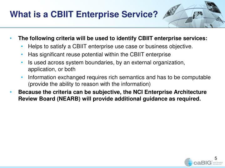 What is a CBIIT Enterprise Service?