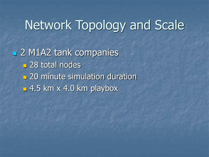 Network Topology and Scale