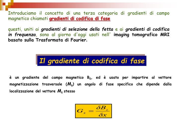 Introduciamo il concetto di una terza categoria di gradienti di campo magnetico chiamati