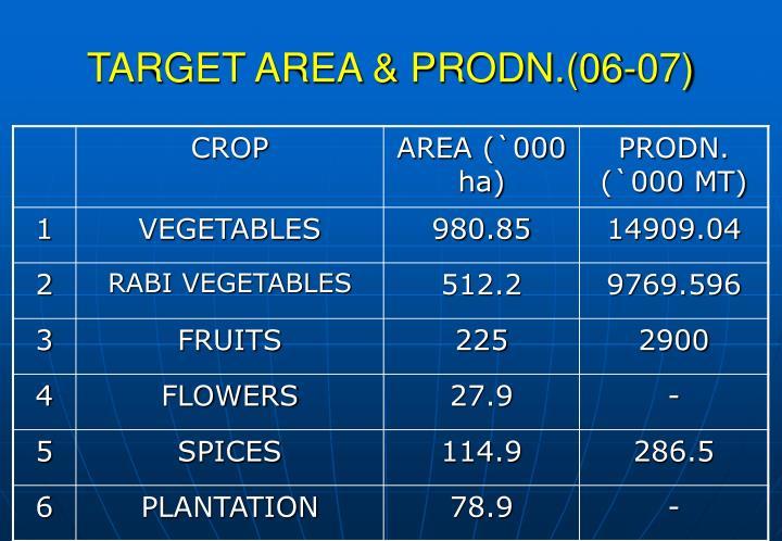 TARGET AREA & PRODN.(06-07)