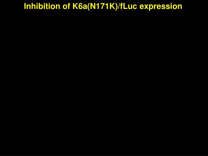 Inhibition of K6a(N171K)/fLuc expression