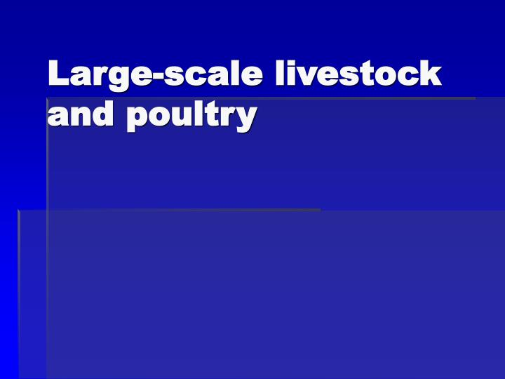 Large-scale livestock and poultry