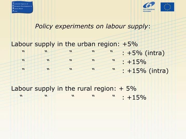 Policy experiments on labour supply
