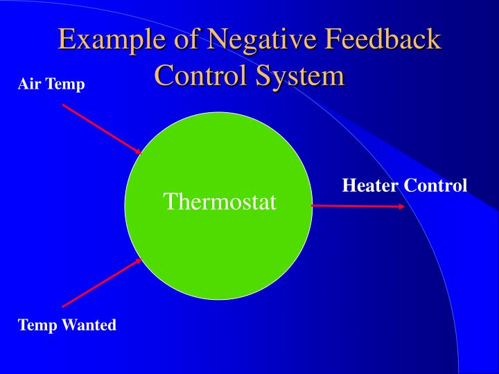Example of Negative Feedback Control System