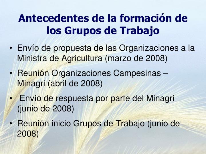 Antecedentes de la formación de los Grupos de Trabajo