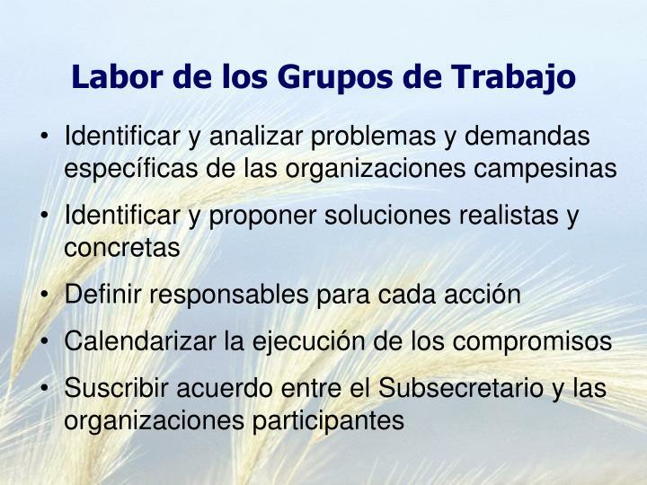 Labor de los Grupos de Trabajo