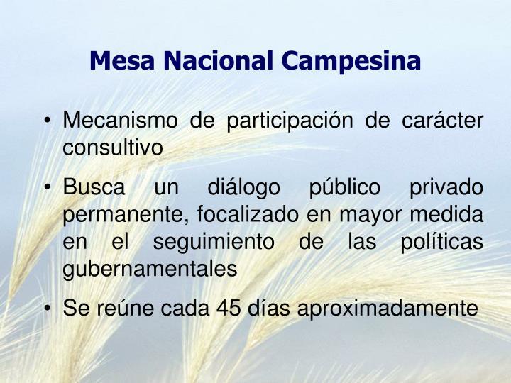 Mesa Nacional Campesina
