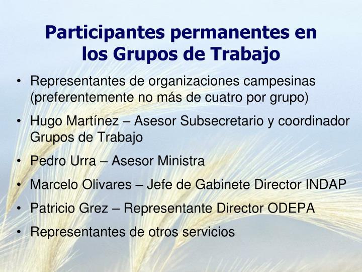 Participantes permanentes en los Grupos de Trabajo