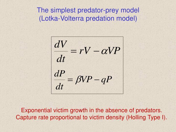 The simplest predator-prey model