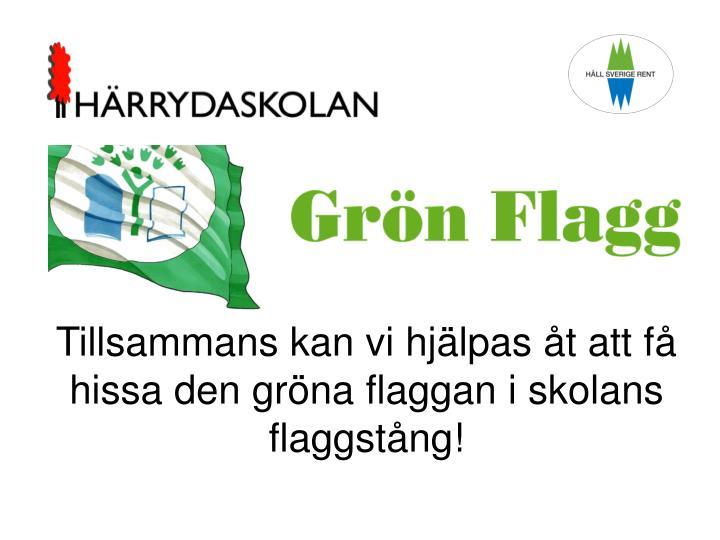 Tillsammans kan vi hjälpas åt att få hissa den gröna flaggan i skolans flaggstång!