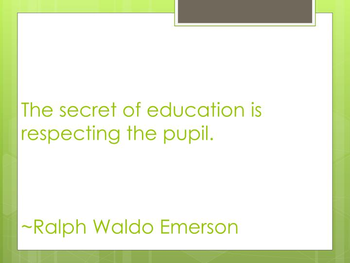 The secret of education is respecting the pupil.