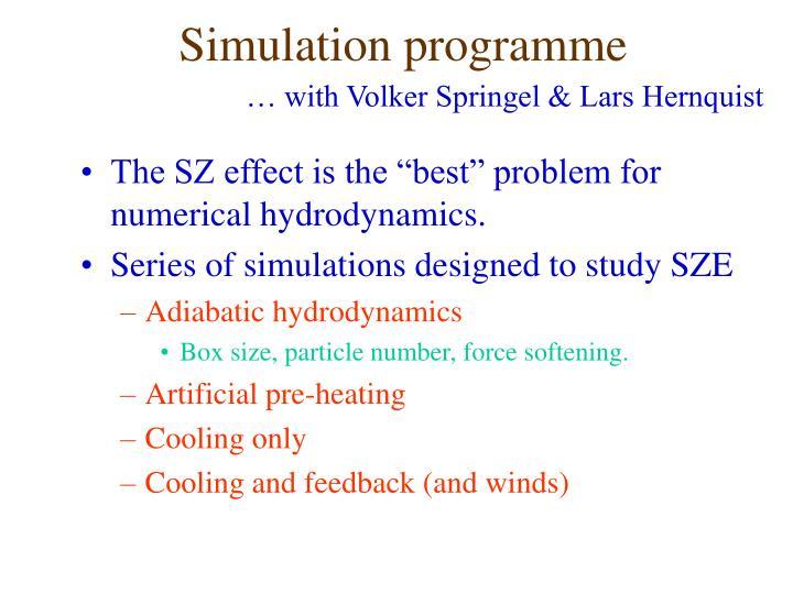 Simulation programme