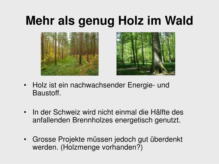 Holz ist ein nachwachsender Energie- und Baustoff.