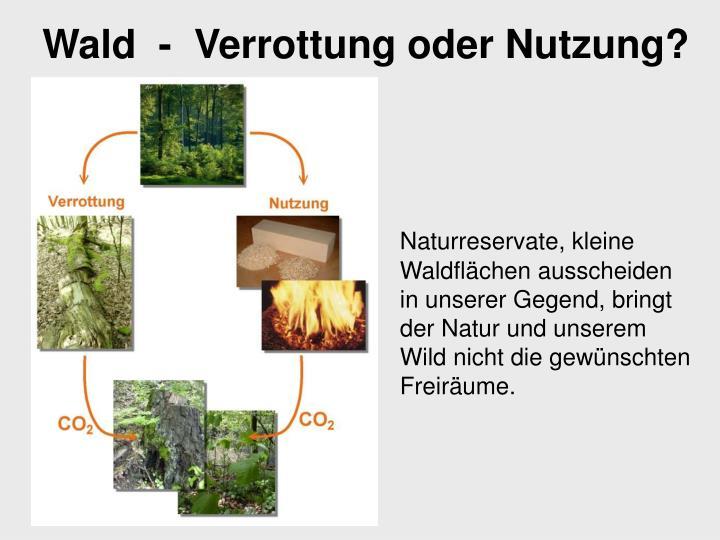 Naturreservate, kleine Waldflächen ausscheiden in unserer Gegend, bringt der Natur und unserem Wild nicht die gewünschten Freiräume.
