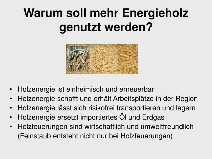 Warum soll mehr Energieholz genutzt werden?