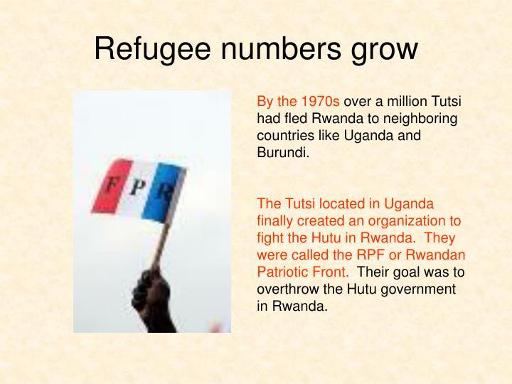 Refugee numbers grow