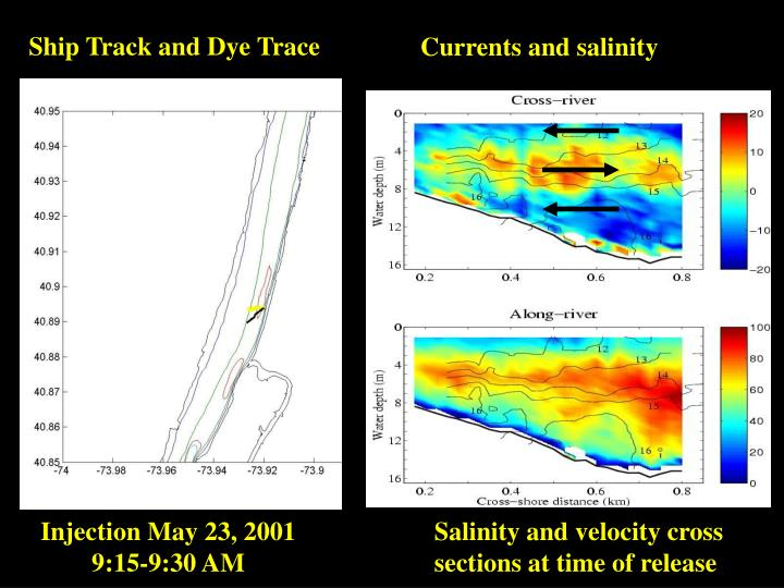 Ship Track and Dye Trace