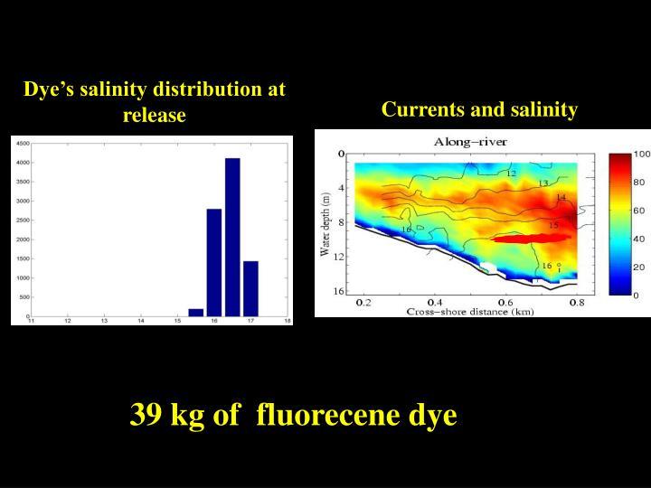 Dye's salinity distribution at