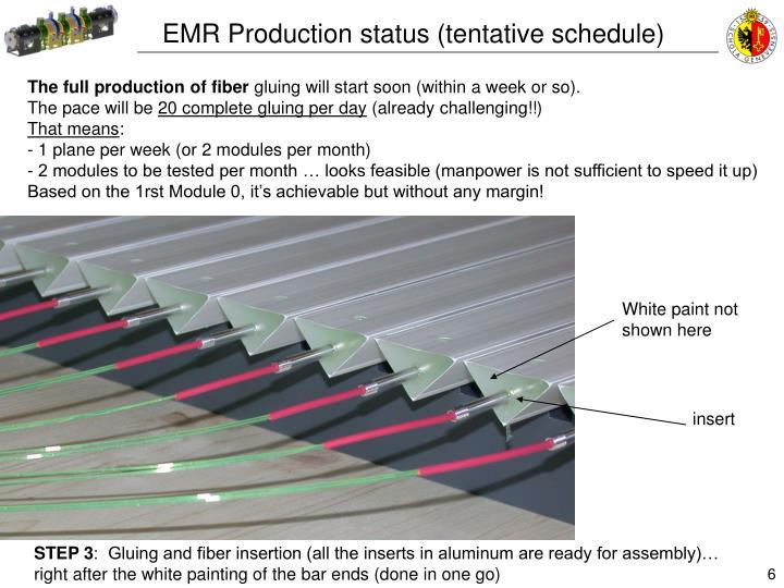 EMR Production status (tentative schedule)
