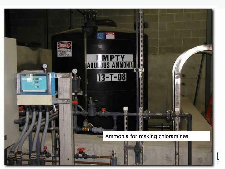 Ammonia for making chloramines