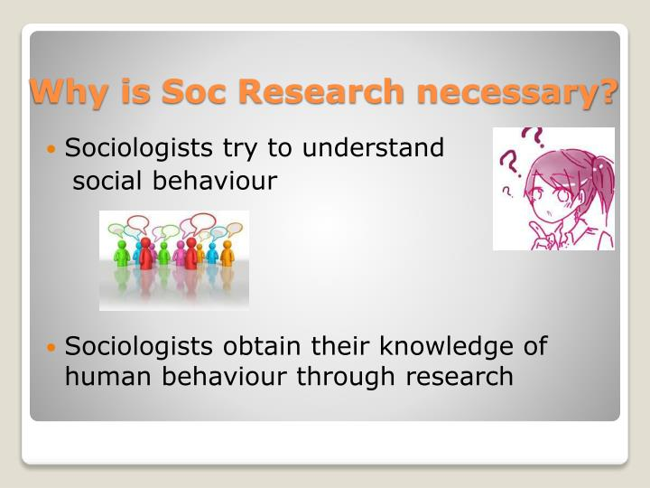 Sociologists try to understand