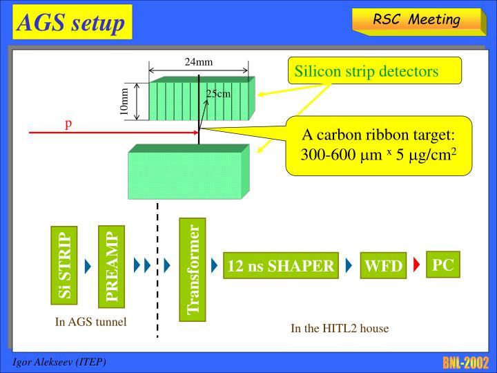 A RIKEN BNL Research Center Workshop