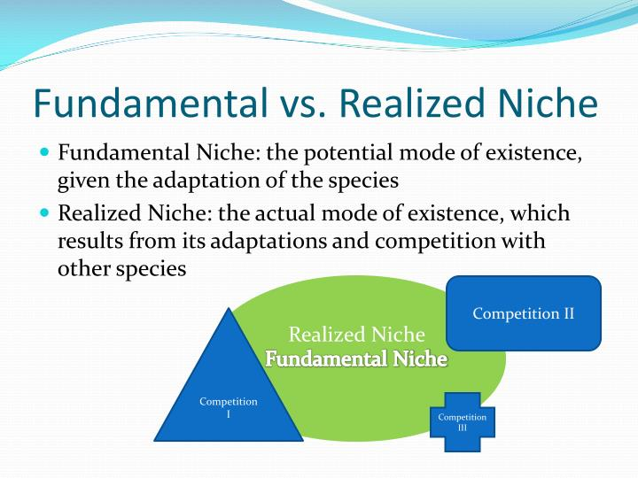 Fundamental vs realized niche