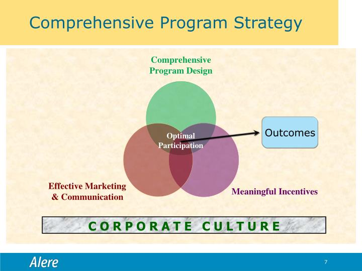 Comprehensive Program Strategy