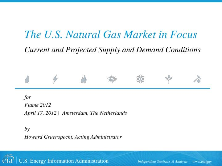 The u s natural gas market in focus