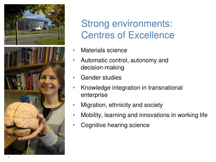 Strong environments centres of excellence