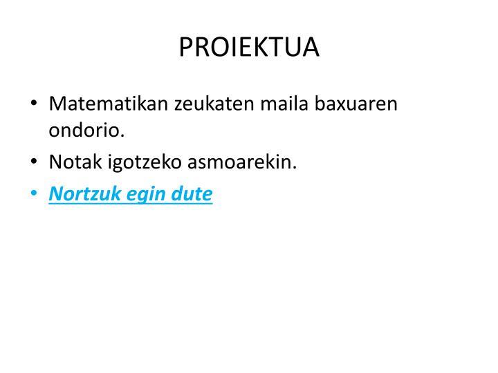 PROIEKTUA