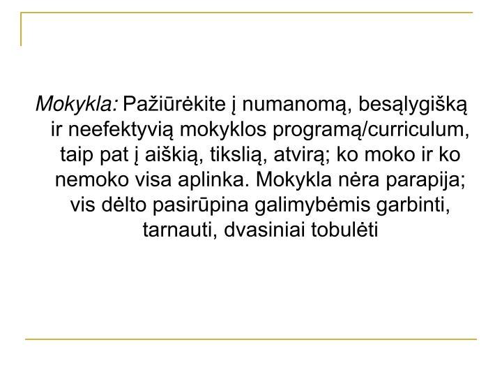 Mokykla: