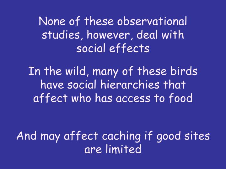 None of these observational studies, however, deal with social effects
